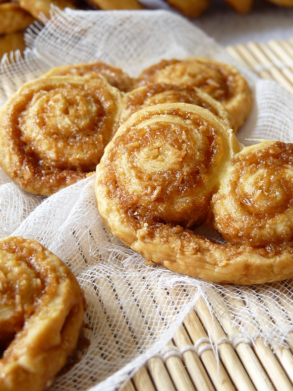 Palmiers coco2