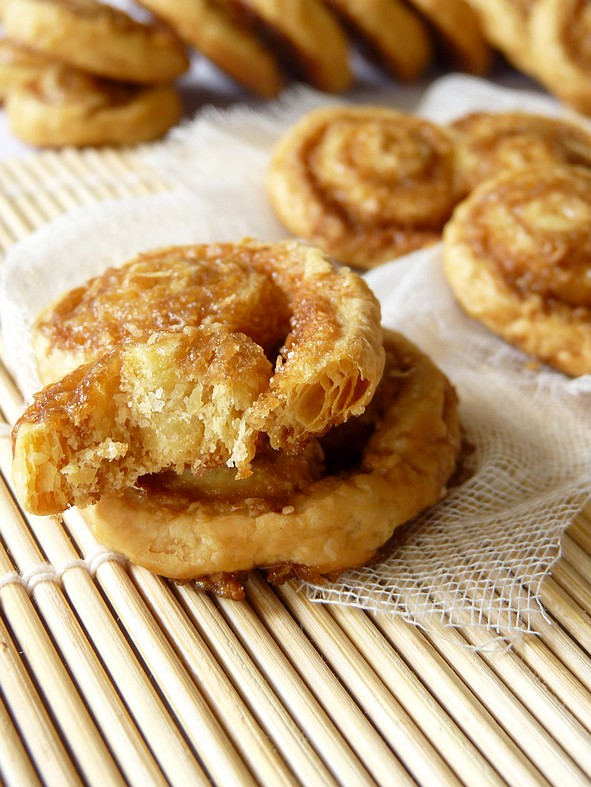 Palmiers coco3