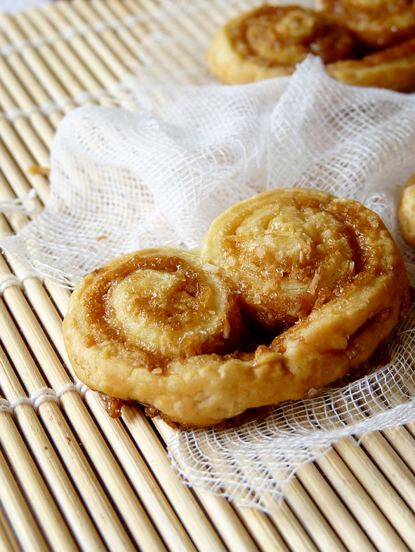 Palmiers coco4