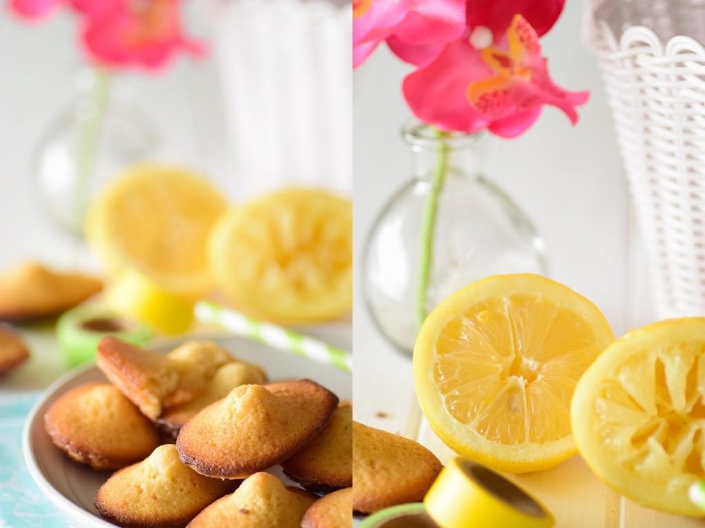 madeleine citron3